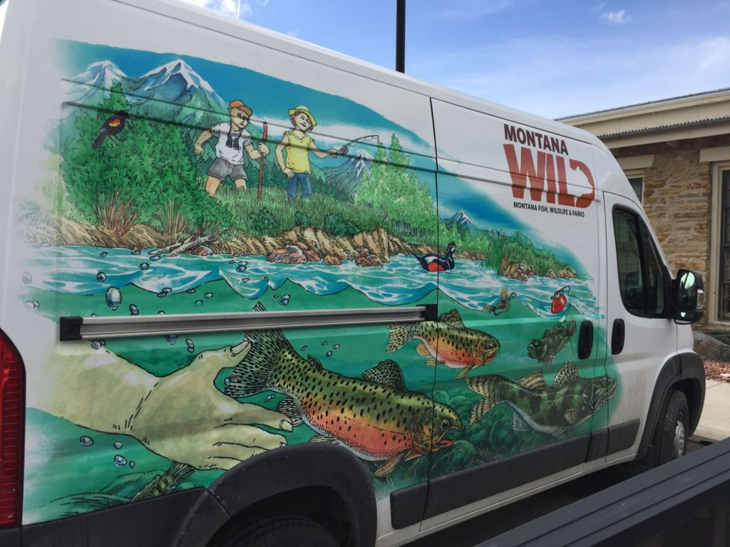 "Montana Fish, Wildlife & Parks 'Traveling Wild' ""aquatic"" graphics."